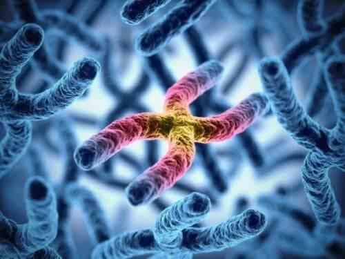 Chromosoom met een defect
