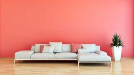 Kamer met roze muur en roze kussens op de bank