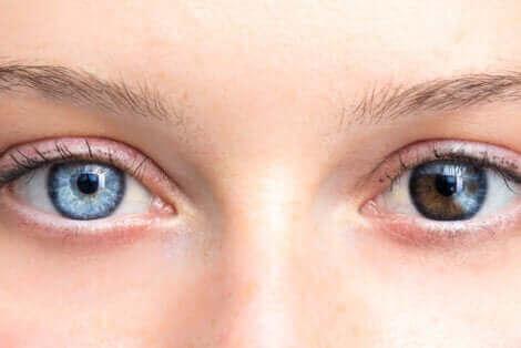 Een blauw en een bruin oog