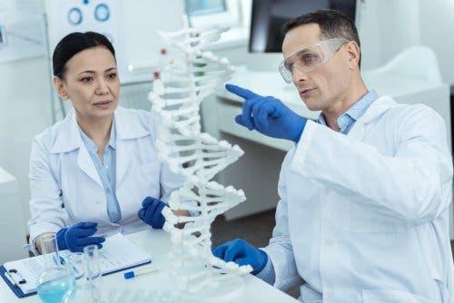 Wetenschappers doen onderzoek