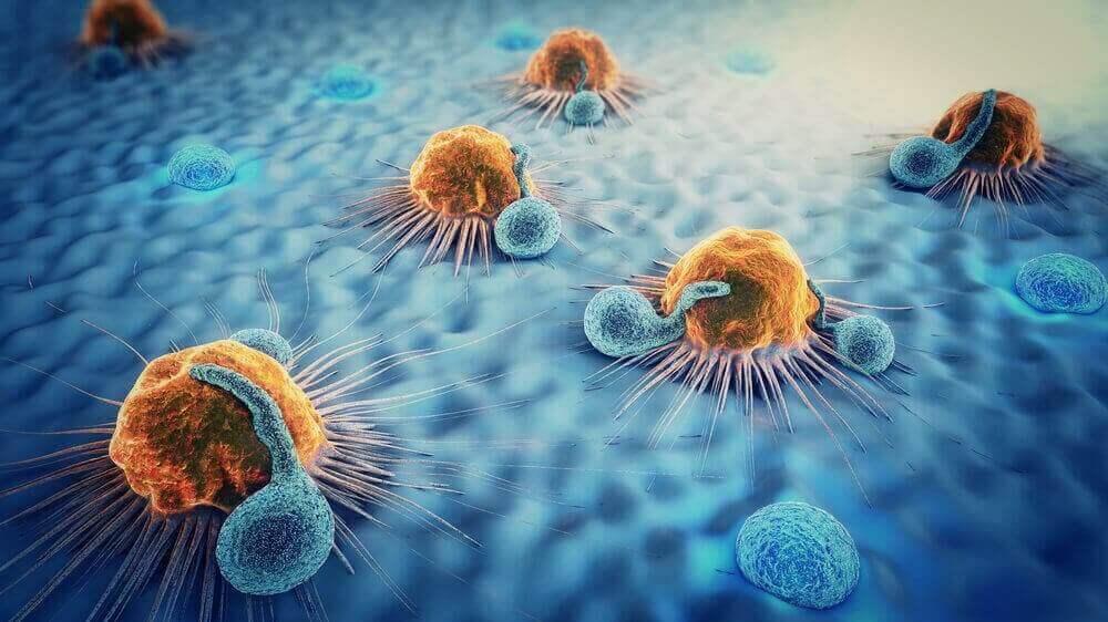 Wat je moet weten over hypoparathyreoïdie