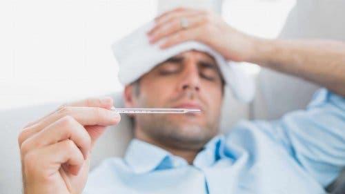 Een vlierbeskompres bij koorts gebruiken
