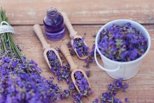 5 manieren om lavendel te gebruiken ter ontspanning