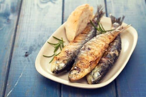 Vis eten in een verzadigend dieet