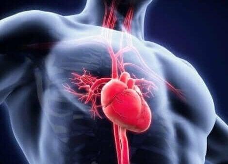 Cardiovasculaire problemen