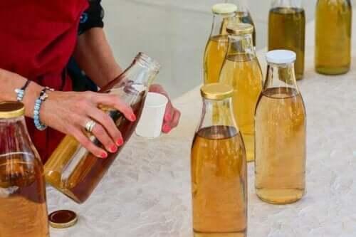 Kenmerken en risico's van kombucha-thee