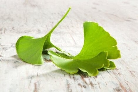 Ginkgo biloba als natuurlijke remedie