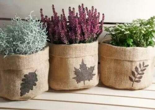 Plantenbakken met planten