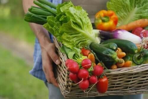 Een mand vol groenten en fruit