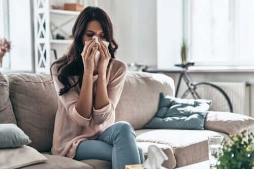 Hardhouten vloeren zijn ideaal voor mensen met allergieën