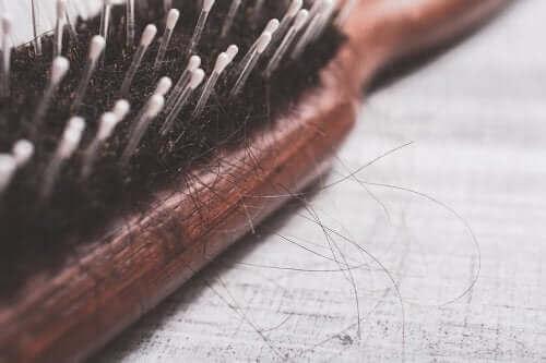 Een borstel met losse haren
