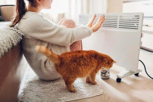 Vrouw en haar kat bij elektrische verwarming