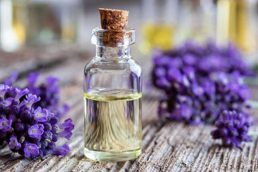 Lavendelolie in een flesje