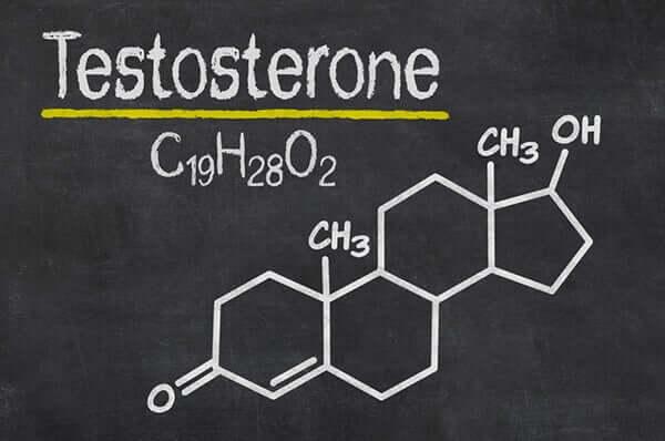 Een van de vier stresshormonen