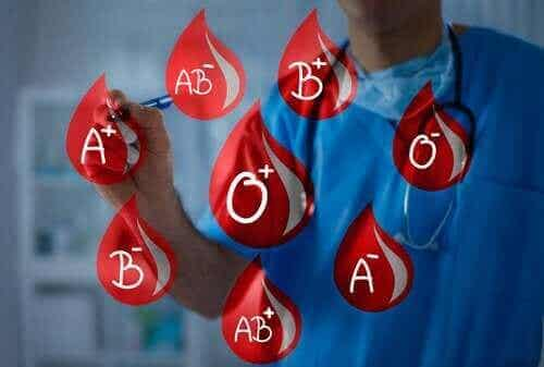 Bloedgroepen: doneer en ontvang bloed