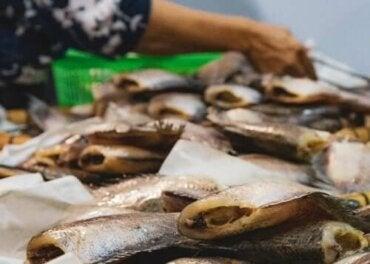 De symptomen van verschillende soorten visvergiftiging