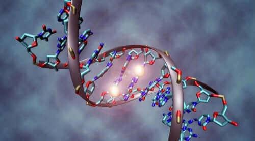Een digitale afbeelding van een DNA-streng