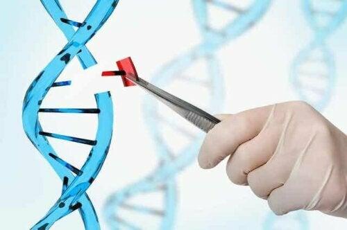 Een technicus die een stukje DNA vervangt op een plastic model