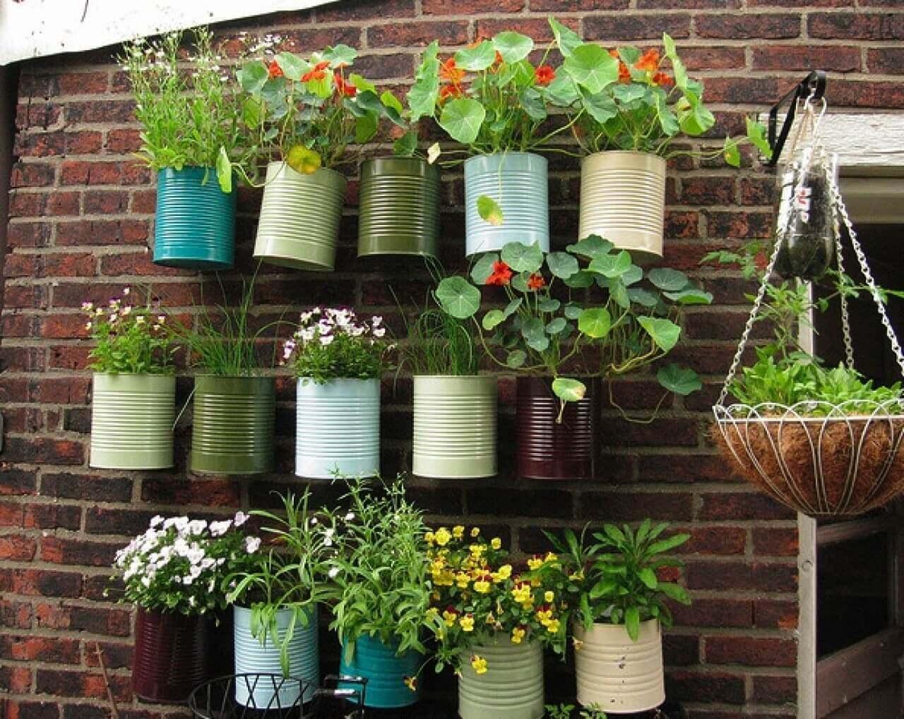 Planten hangen aan een muur