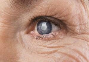 Wat is diabetische retinopathie precies?