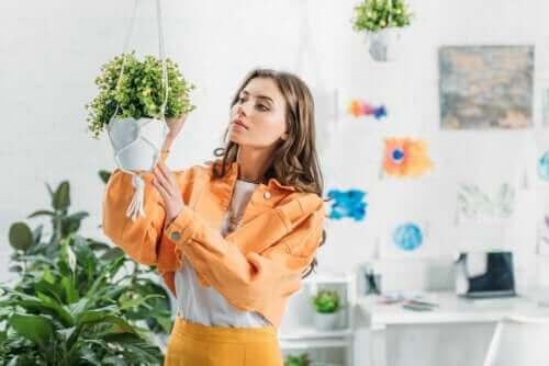Hoe hangende plantenbakken voor je planten te maken