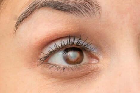 Een close-up van een bruin oog