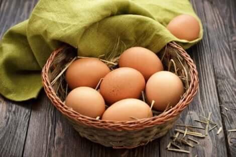 Een mandje eieren