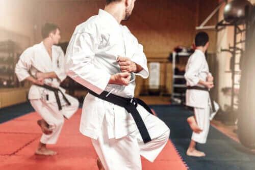 De verschillen tussen karate en taekwondo