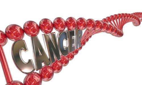 Wat weet je over genetisch onderzoek naar kanker?