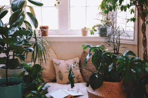 Hoe creëer je een ontspanningshoek thuis?