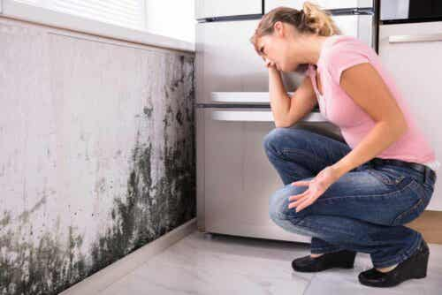 Vrouw bekijkt schimmel op de muur