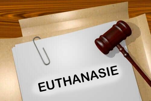 Soorten euthanasie die je moet kennen