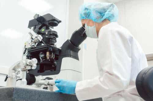 Een arts onderzoekt weefsel met een microscoop