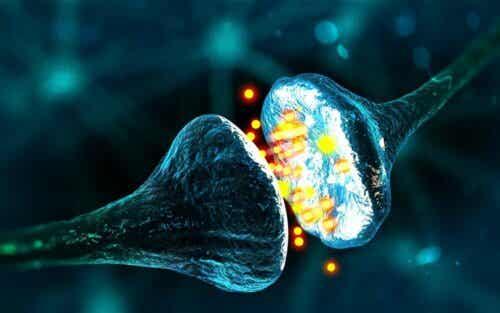 Een uitvergroting van een neuron