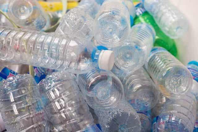 Hoe bereiken microplastics ons lichaam