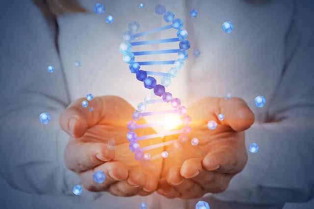 Wat zijn genetische markers