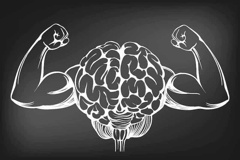 Tekening van het brein