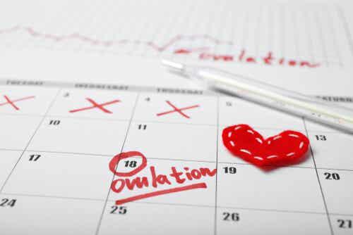 Menstruatiecyclus volgen met behulp van een kalender