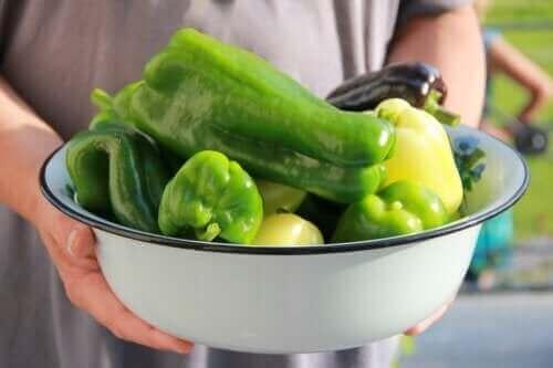 Hoe kun je thuis paprika's kweken?