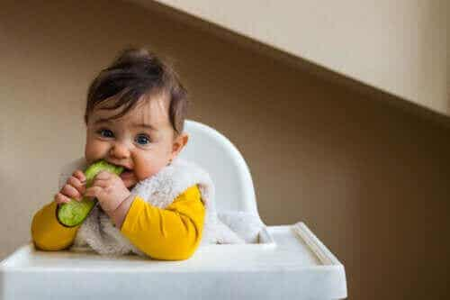 Komkommer aan het dieet van je baby toevoegen
