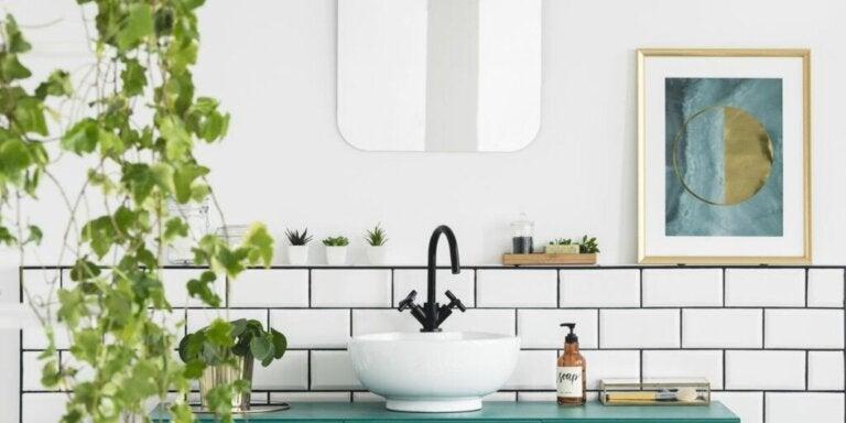 Decoreer de badkamer met planten: 7 ideeën
