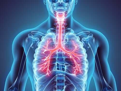 Wereld Astma Dag: je kunt deze ziekte onder controle houden