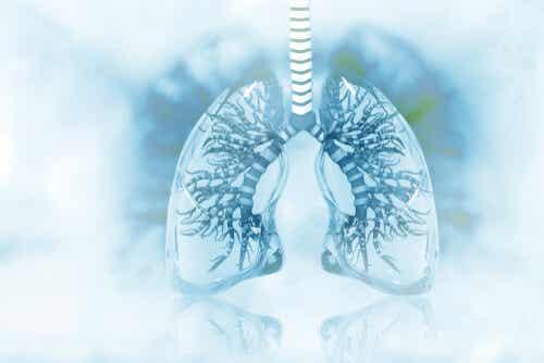 Een afbeelding van ontstoken longen