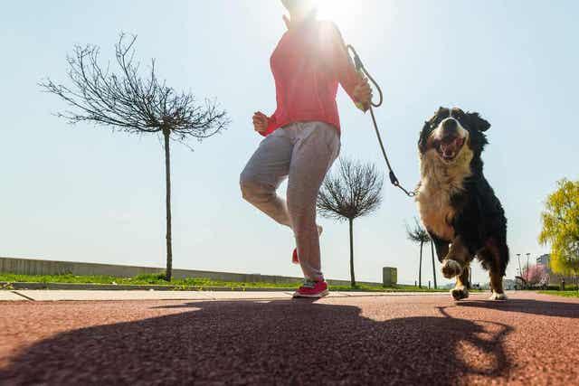 Kom in beweging om een sedentaire levensstijl te voorkomen